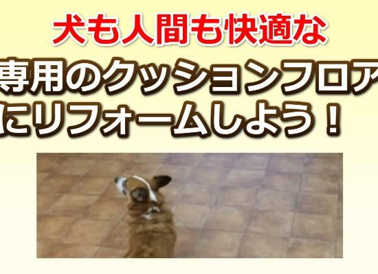 犬用のクッションフロア